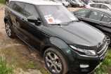 Land Rover Range Rover Evoque. ЗЕЛЕНЫЙ (AINTREE GREEN)
